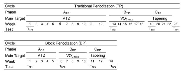 performance changes TP vs BP