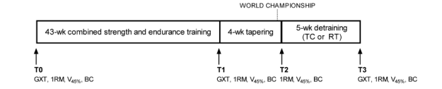 physiological-effects-of-tapering-fig1-cropped